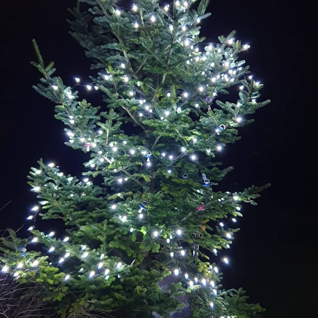 The Dummy Tree Lit up a Night